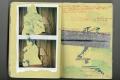 yellowbook_006
